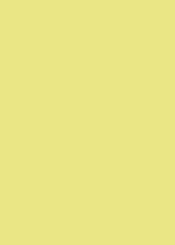 OKW_kiwi